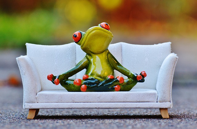 frog-1079973_640
